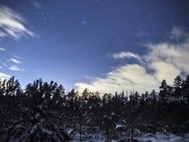 Pleiades otwarty gwiazdowy grono na nocnym niebie i chmurach nad zima lasem zdjęcia royalty free