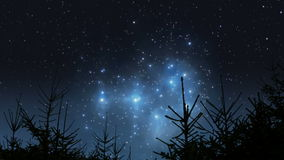 Pleiades rising over the forest stock video