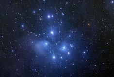 Pleiades Star Cluster. One of the most beautiful and well known star clusters in the night sky is seen in this long exposure image with hte surrounding nebula royalty free stock photography