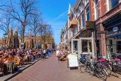 - Plein- στη Χάγη, Κάτω Χώρες Στοκ εικόνες με δικαίωμα ελεύθερης χρήσης