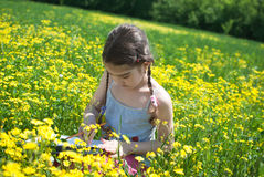 Plein air, girl drawing in the field stock images
