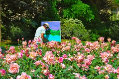 Old Man Artist Painting Outdoors in Rose Garden Royalty Free Stock Photos
