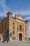 Plein DE toros Royalty-vrije Stock Foto's