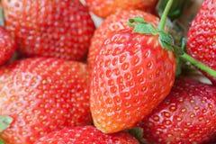 Plein fond de cadre de fraises parfaites mûres fraîches Image stock