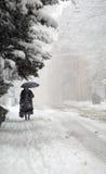 Plein hiver Photos libres de droits