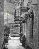 Plein hiver morne Image libre de droits