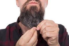 Plein homme barbu employant le baume de barbe ou l'huile, produit de soin pour les hommes Photos libres de droits