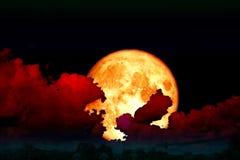 Plein nuage de silhouette de dos de lune de fraise en ciel nocturne Images libres de droits