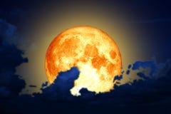 Plein nuage de silhouette de dos de lune de ver en ciel nocturne Photos stock