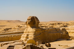 Plein profil de fuselage de sphinx vide photos libres de droits