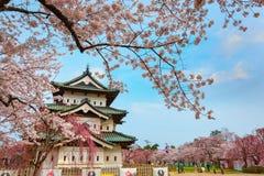 Pleine floraison Sakura - Cherry Blossom au château de Hirosaki en parc de Hirosaki photographie stock