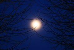 Pleine lune. Images stock