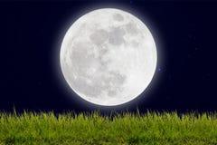 Pleine lune avec les étoiles et le champ de la colline verte sur le ciel d'obscurité Photographie stock libre de droits