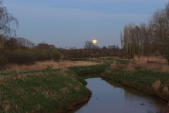 Pleine lune en nature Photos stock