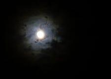 Pleine lune et nuage coloré Image stock