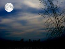 beau paysage de lune avec la silhouette de ville image. Black Bedroom Furniture Sets. Home Design Ideas