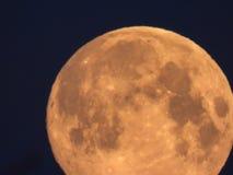pleine lune jaune dans le ciel de matin photographie stock