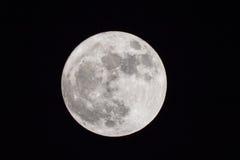 Pleine lune, lune superbe Photos libres de droits