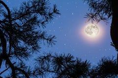 Pleine lune sur le ciel nocturne Photos libres de droits