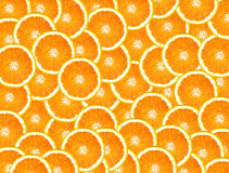 pleine orange Photo stock