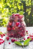 Pleines cerises et framboises de fruits de pot en verre Photographie stock libre de droits