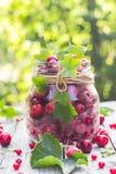 Pleines framboises de cerises de fruits de pot en verre Image libre de droits