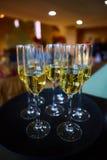 Pleines glaces de champagne sur le plateau Photo stock