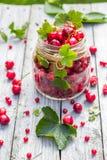 Pleines groseilles de cerises de fruits de pot en verre photos libres de droits