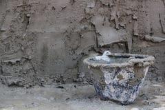 Pleistertanks, plattelandsontwikkelingkampen Stock Fotografie