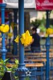 Plenerowa kawiarnia na San Antonio Riverwalk obraz royalty free