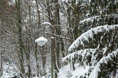 Plenerowa lampa w ogródzie Fotografia Stock