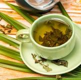 Plenerowa zielona herbata Reprezentuje Outdoors orzeźwienie I restauracje obrazy royalty free