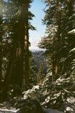 Plenerowe góry Obrazy Royalty Free