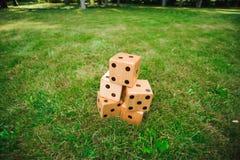 Plenerowe gry - Duże dices, gigantyczna plenerowa gra na zielonej trawie zdjęcie royalty free