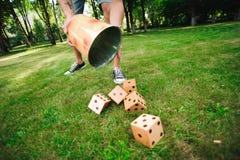 Plenerowe gry - Duże dices na zielonych gras zdjęcie stock