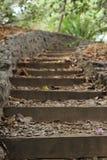 Plenerowi ogródów kroki Zdjęcie Royalty Free