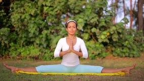 Plenerowy joga medytaci ćwiczenie w naturze zdjęcie wideo