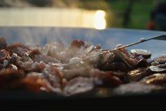 Plenerowy kucharstwo Zdjęcie Stock