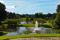 plenerowy ogród botaniczny meadowlark Zdjęcie Royalty Free