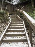 Plenerowy schody do ptasiego dozownika i pokładu Zdjęcie Royalty Free