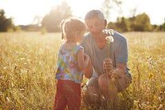 Plenerowy strzał czule dziad daje pięknemu bukietowi rumianki jego mała wnuczka, wydaje wolnego czasu toge obraz stock