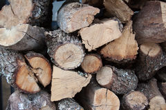 Plenerowy Woodpile Obrazy Royalty Free