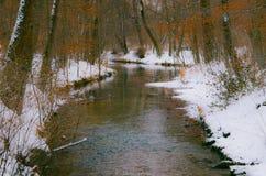 Pleno invierno inerte más nevoso pigmentado orilla Foto de archivo libre de regalías