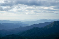 Plentiful mountain. The fertile hills covered with trees and sky Stock Photography