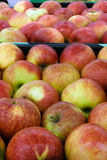 Plenty of apples in the food store Royalty Free Stock Photos
