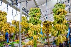 Plenty of bananas bunches at market area Stock Photos