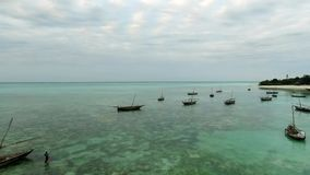 Plenty of boats in tanzania, zanzibar, aerial. Plenty of boats of poor fishermen of tanzania, zanzibar, sitting in calm waters, aerial stock footage