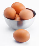 Plenty of eggs Royalty Free Stock Photos