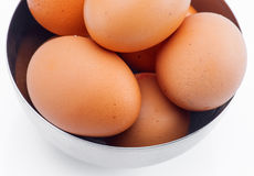 Plenty of eggs Stock Photography