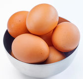 Plenty of eggs Royalty Free Stock Images